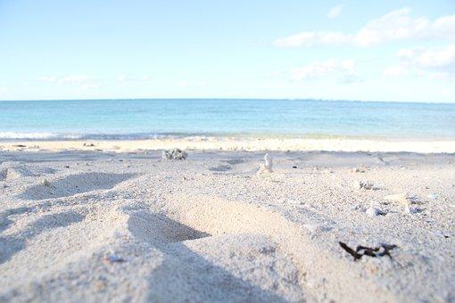 ビーチ, 砂浜, 沖縄, 北部, 海, 癒し, 無人ビーチ, プライベート