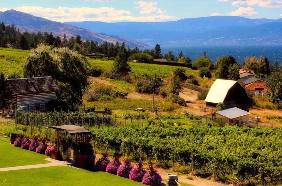 Lovely Farm, Landscape, Garden, Plants, House, Home, Mountains