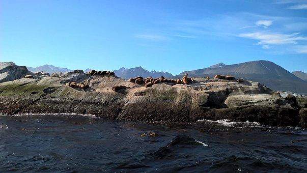 Canal Beagle y la Antártida