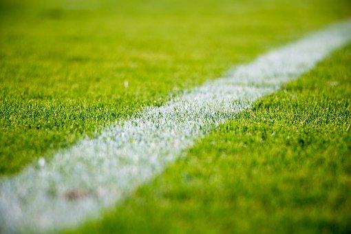 Grass, Lawn, Field, Sports, Soccer