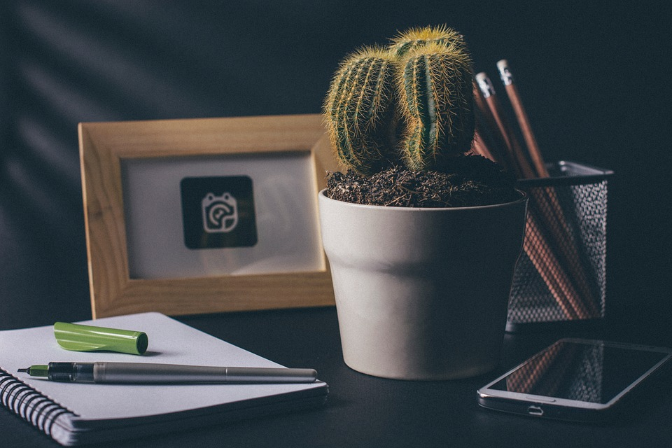 Awesome Cactus Office Desk Notebook Notepad Pens Pencil