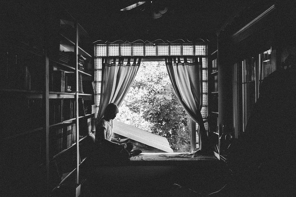 girl woman reading 183 free photo on pixabay