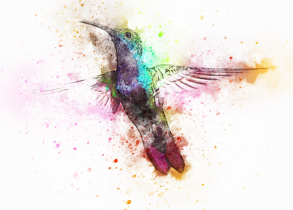 40e6908a7 bird animal art abstract watercolor vintage