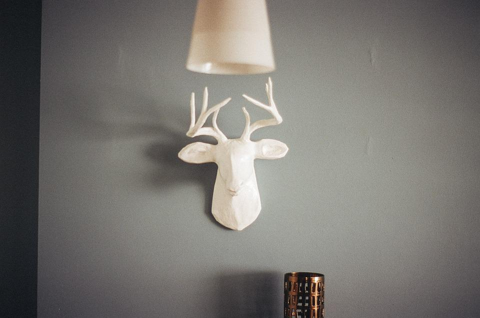 Deer antlers mount free photo on pixabay deer antlers mount wall lamp shade mozeypictures Gallery