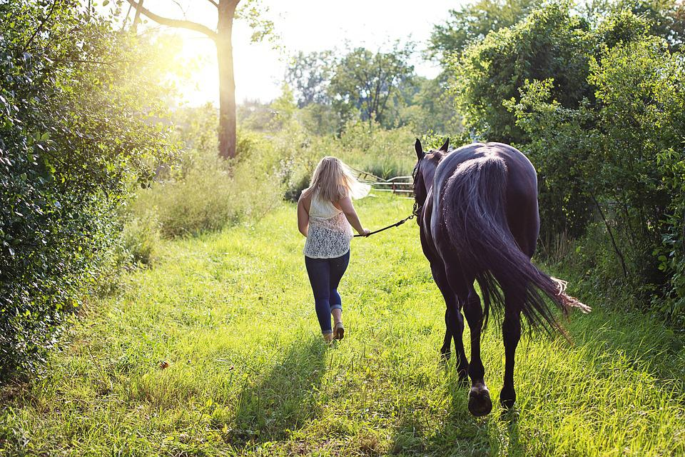 frau auf pferd
