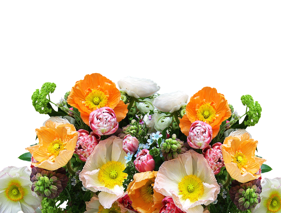 Cut Flowers Images Pixabay Download Free Pictures