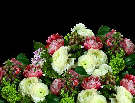 300 Kostenlose Hochzeitstag Und Liebe Bilder Pixabay