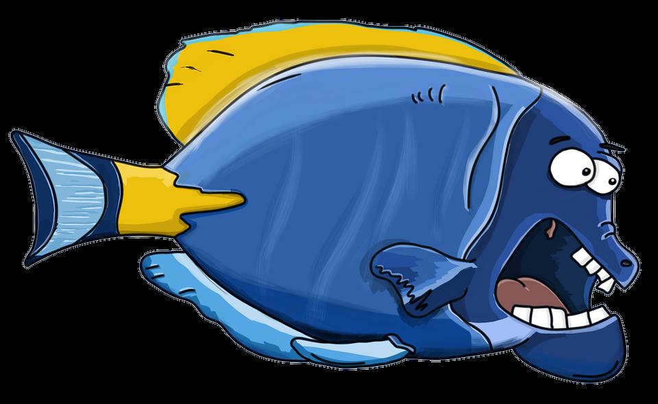 Pesce lacquario cartone animato immagini gratis su pixabay