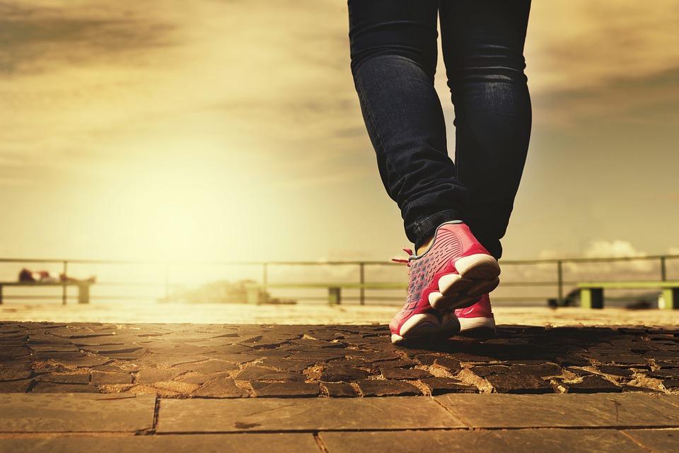 Legs, Shoes, Walk, Walk, Path, Trail