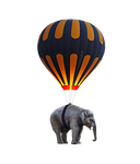 elephant, balloon, fly