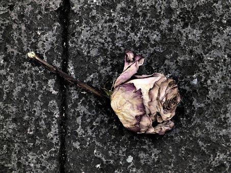 tristesse - images gratuites sur pixabay