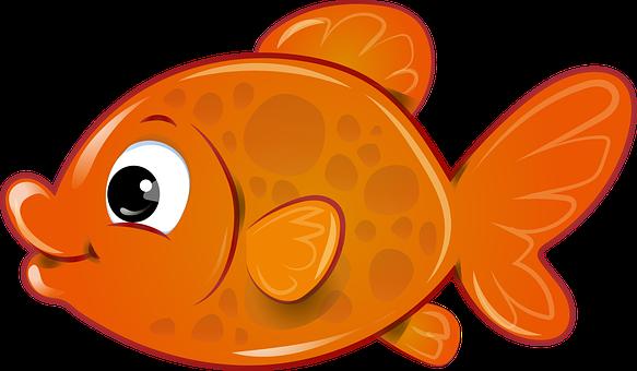 Pesce, Pesce Rosso, Pesciolino