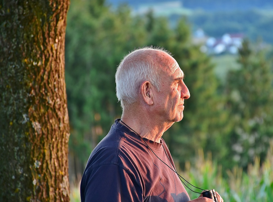 Senior, Man, Wandelen, Pensioen, De Natuur, Bos, Gemeld