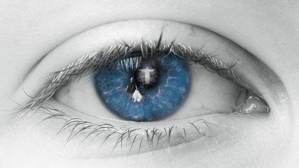 Eye, Blue, Human, View, Eyelashes, Lid