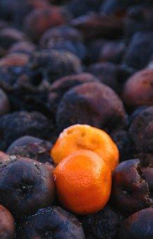 Orange, Rotten Fruit, Rotten Fruit