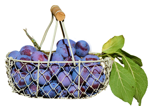 Plums In The Basket, Fruit, Isolated