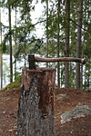 axe, forest, nature