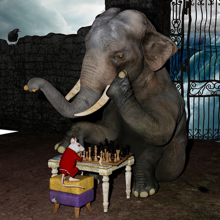 Free Photo Play Chess Elephant Mouse Snail Free