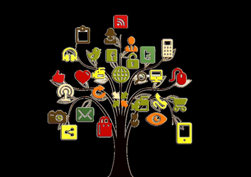 Træ, Struktur, Netværk, Internet, Socialt