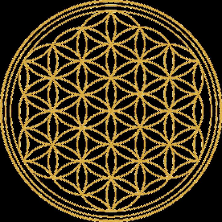 Fleur De Vie Graphique Les Images Vectorielles Gratuites Sur Pixabay