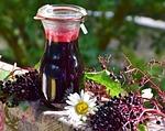 elder, elderberries, berries