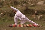 yoga, yogi, exercise