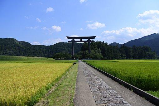 日本, 和歌山, 神社, 熊野, 本宮大社, 熊野三山, お参り, 鳥居