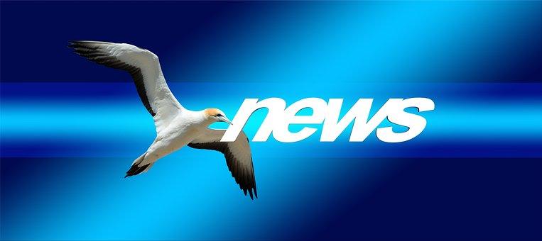 News, Press, Newspaper, Commenced