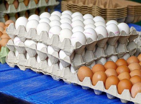 Egg, Hen'S Egg, Egg Carton, Lots Of Eggs