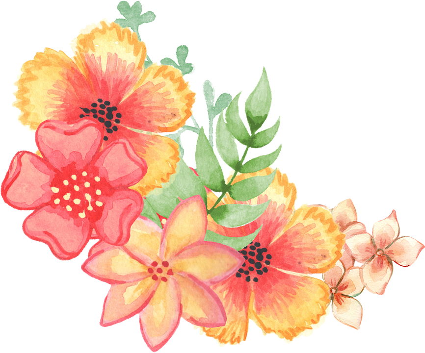 Floral Decoration Embellishment Watercolor Flowers