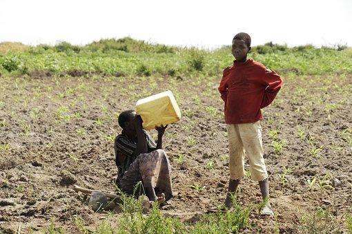 Village, People In Uganda, Uganda, Farm
