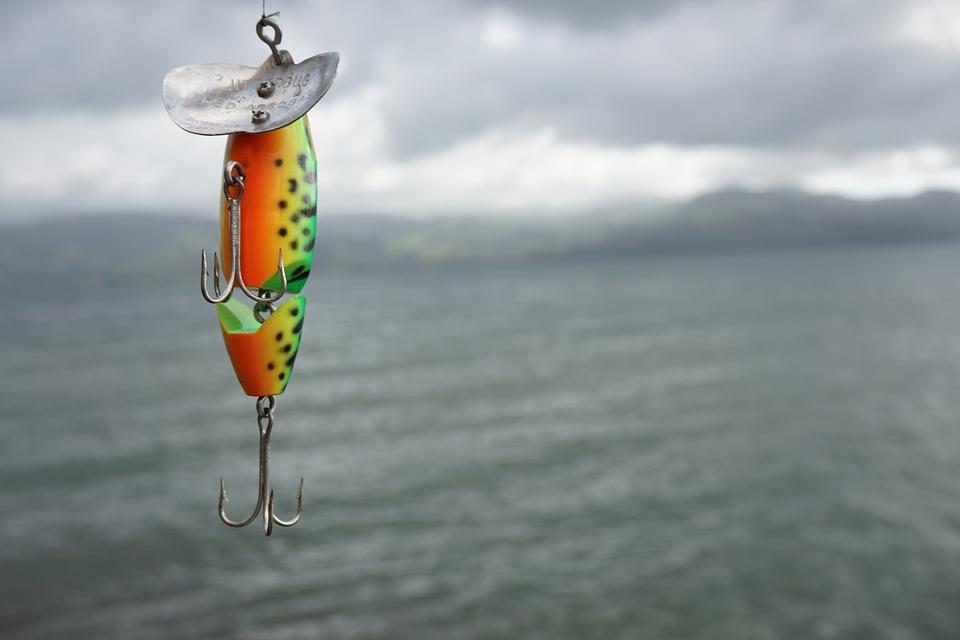 Visserij, Meer, Costa Rica, Natuur, Water, Rod