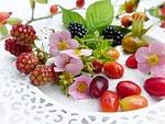 berries, frisch, fruits