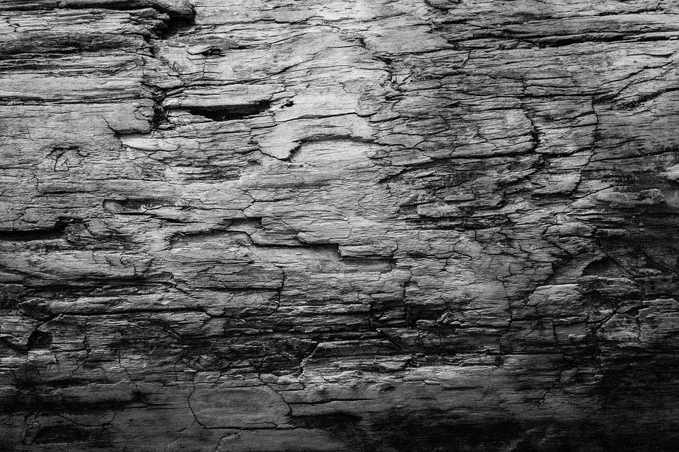 Legno Bianco E Nero : Texture bianco e nero legno · foto gratis su pixabay