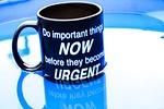 mug, quotes, text