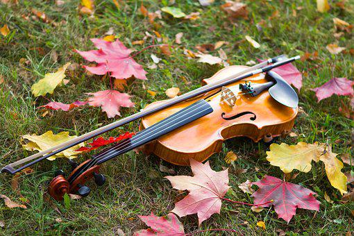 Autumn, Violin, Musical Instrument, Mood
