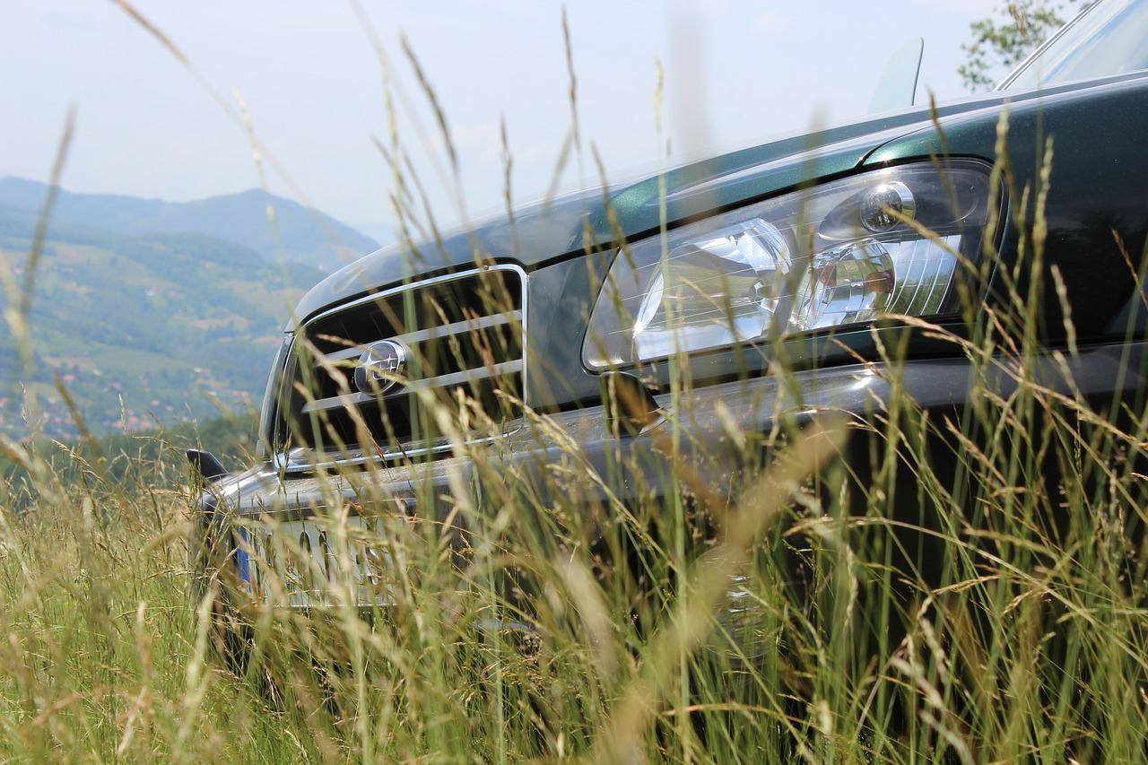 Subaru Forester in the grass