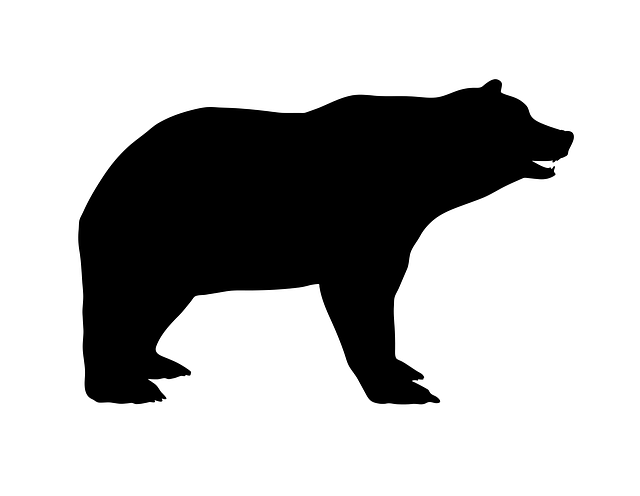 bear large heavy 183 free vector graphic on pixabay