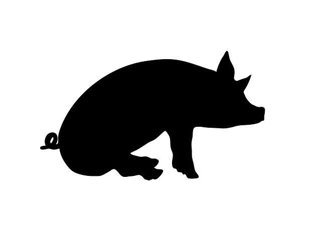 Free Vector Graphic Sit Sitting Sit Down Pig Animal