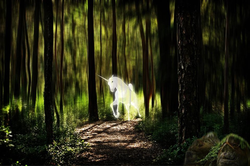 Unicornio Bosque Imagen De La - Foto gratis en Pixabay