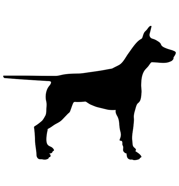 Yelp Icon Transparent Dog Animal Silhouette ...