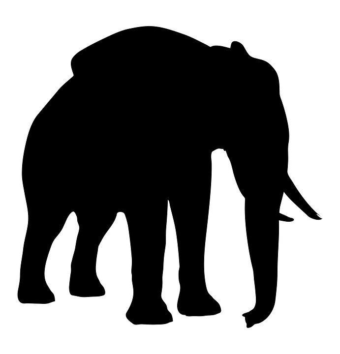 Silhouette Elephant Animal 183 Free Vector Graphic On Pixabay