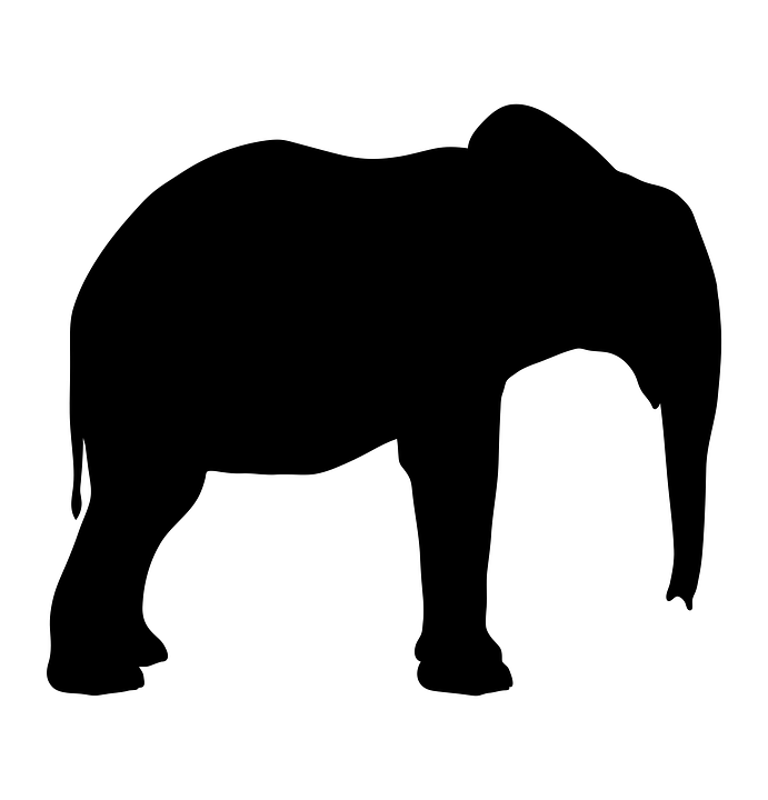 Silhouette Elephant Animal 183 Free Vector Graphic On Pixabay