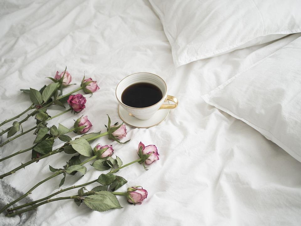 Rosas, Café, Pétalo De Una Rosa, Romántico, Naturaleza