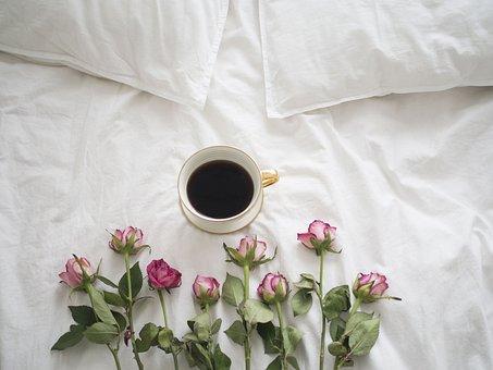 Кафе, Рози, Легло, Порцелан, Чаша Кафе