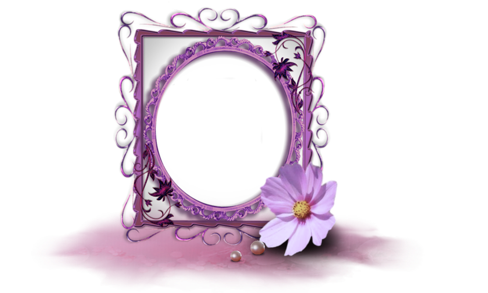Purple Frame Images · Pixabay · Download Free Pictures