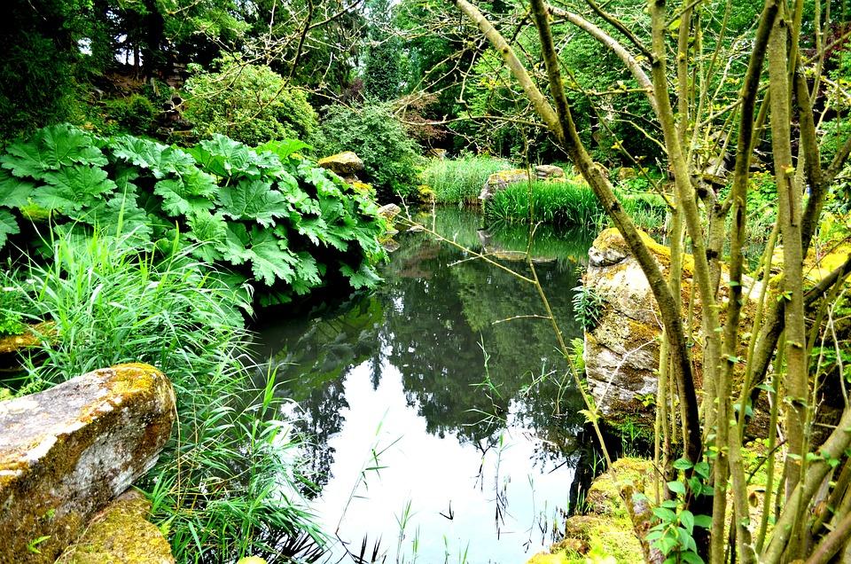 Los Jardines De Chatsworth Plantas · Foto gratis en Pixabay