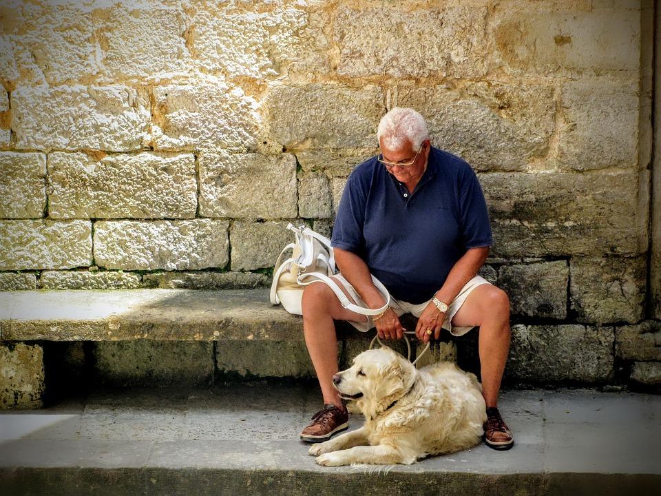 Uomo, Cane, Azienda, Nonno, Uomo Vecchio, Anziano