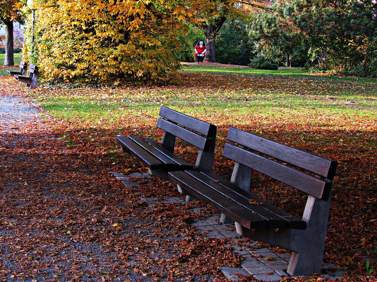 Парк скамейка картинки