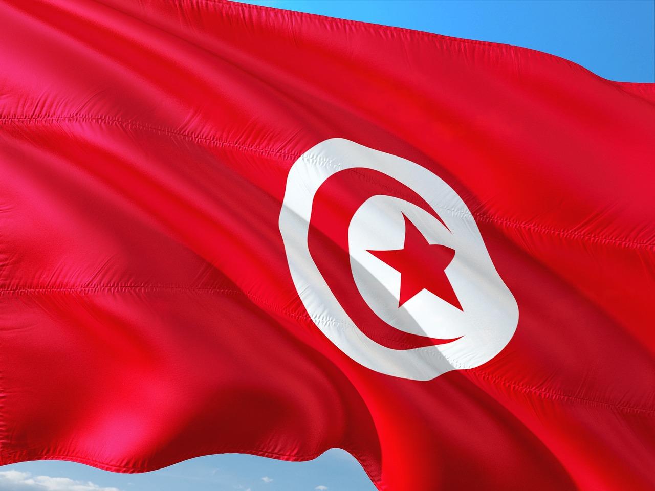 тунис флаг фото картинки является достаточно